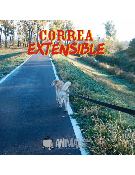 Correa Flexi hasta 35kg