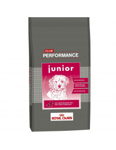 alimento performance junior