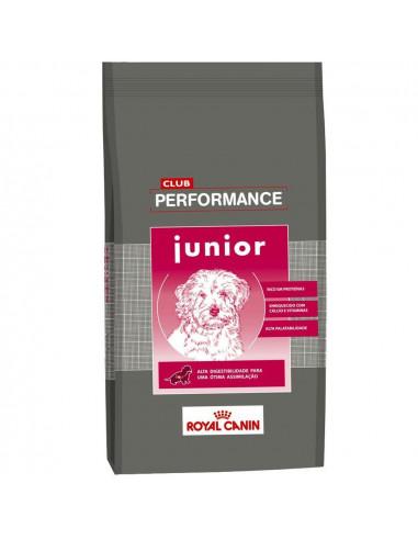 alimento performance junior