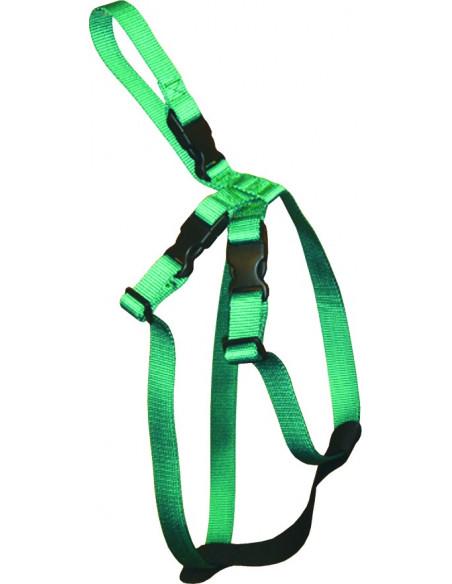 Cinturon de Seguridad S