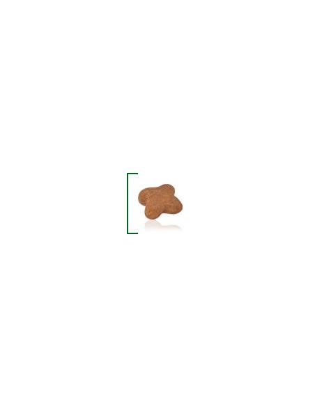 Royal canin mini adulto 8+