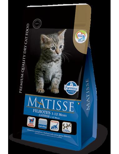 Matisse Filhotes x 7.5 kg GATITOS...