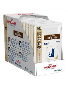 Royal Canin Gastro Intestinal Pouch X 100 Grs X 12 Unidades