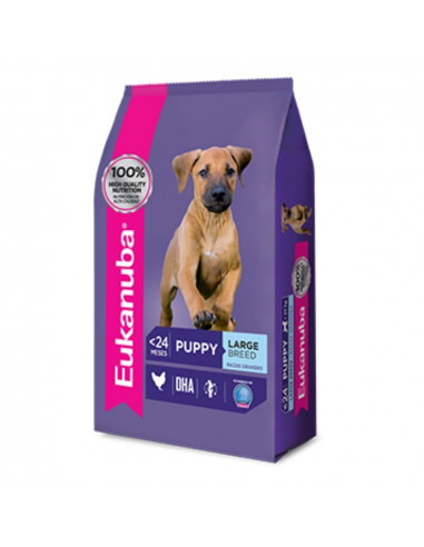 Eukanuba Puppy Large x 15 kg